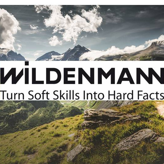 Wildenmann Consulting GmbH & Co. KG